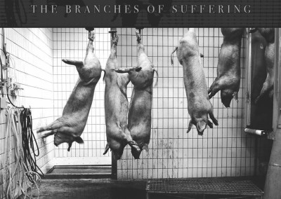 BBMA21 – No Restraint – The Branches Of Suffering 7″