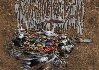 BBMA54 – Forward To Eden – A Human Artefact 12″