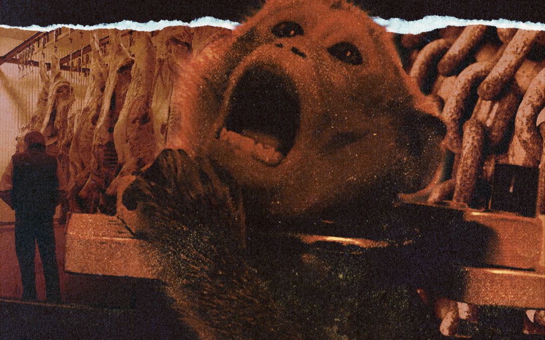 BBMA110 – Times Of Desperation – Gaia Bleeds 7″